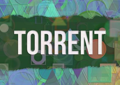 Best Vpn for Torrenting | Reddit